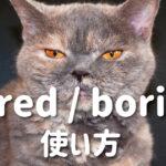 bored と boring の使い方